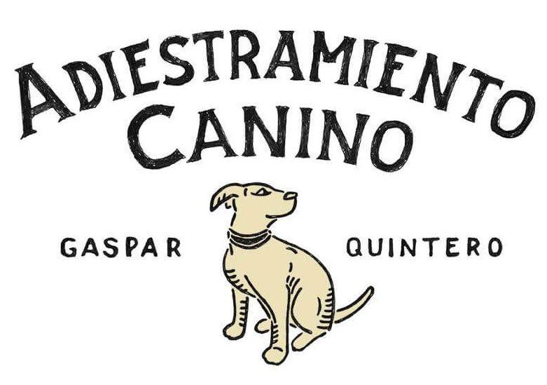 Gaspar Adiestrador Canino