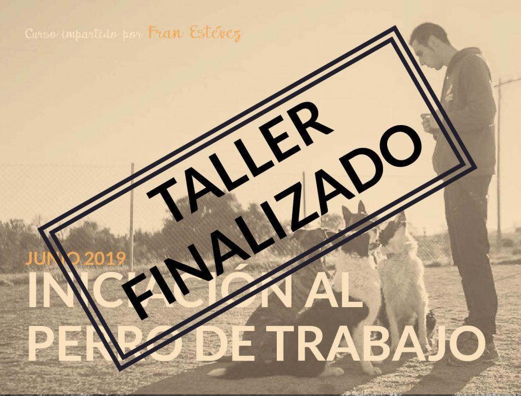 taller_FRAN ESTEVEZ_CERRADO
